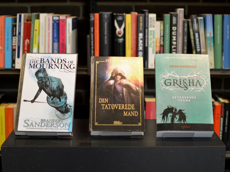 Fantasy bøger