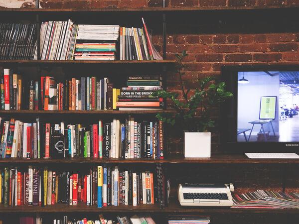 Bøgerne bag tv-serien