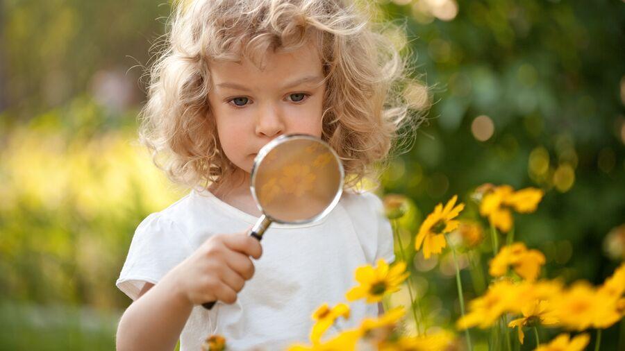 Vores egne haver byder på masser af muligheder for at gå på opdagelse.