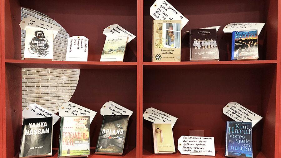 Bøger udvalgt af Herlevs borgere udstillet i Drømmebiblioteket