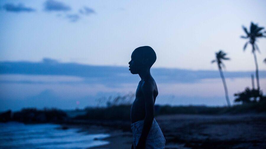 """Mørk dreng i aftenlys på strand – foto fra filmen """"Moonlight"""", rettighederne tilhører Filmstriben"""