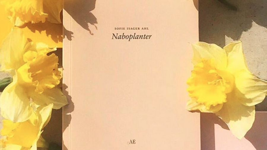 Sofie Isager Ahl: Naboplanter