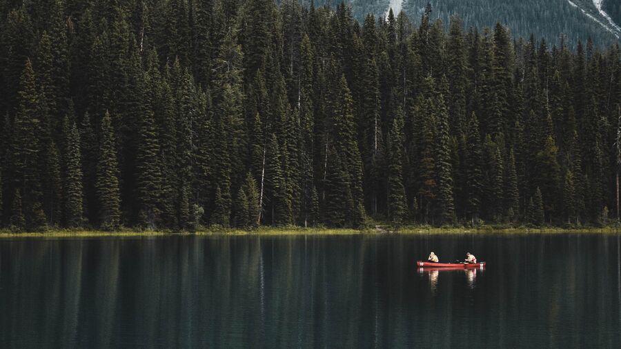 To personer i kano på en skovsø