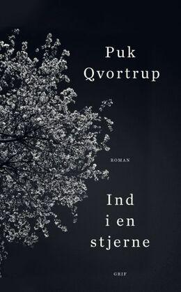 Puk Qvortrup: Ind i en stjerne : roman
