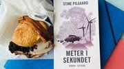 """Stine Pilgaards """"Meter i sekundet"""" er en af årets sjoveste romaner"""